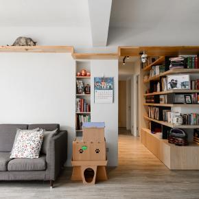 现代风装修效果图:为喵星人打造专属宽广的猫乐园